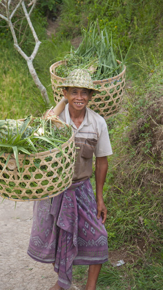 Asia Travels – The Beauty of Bali, Indonesia40