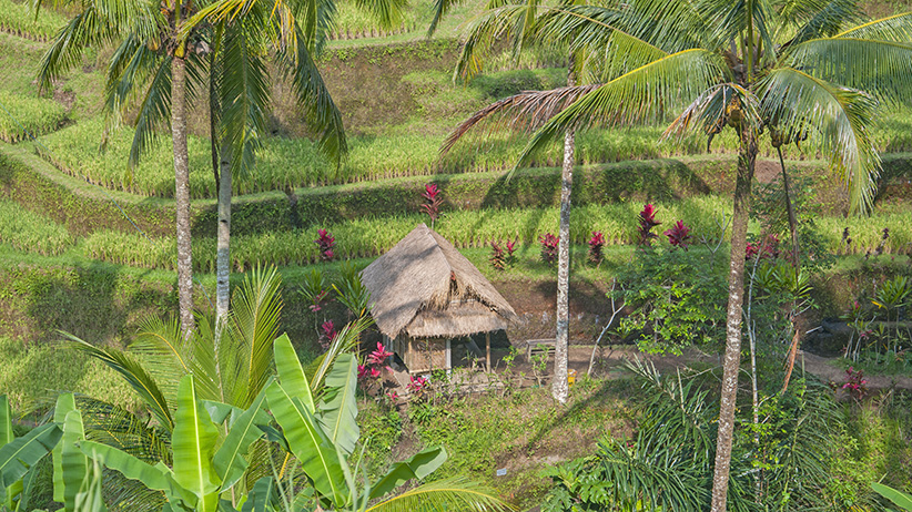 Asia Travels – The Beauty of Bali, Indonesia8