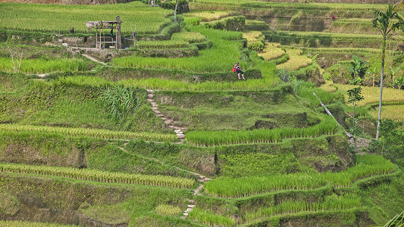 Asia Travels – The Beauty of Bali, Indonesia9