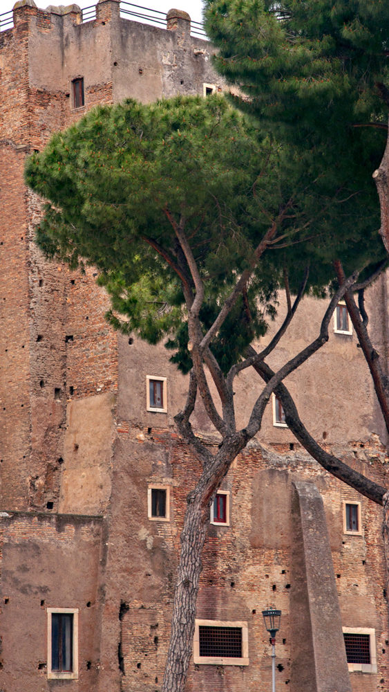 Rome Photos- 50 Photographs to Inspire You to Visit Rome, Italy27