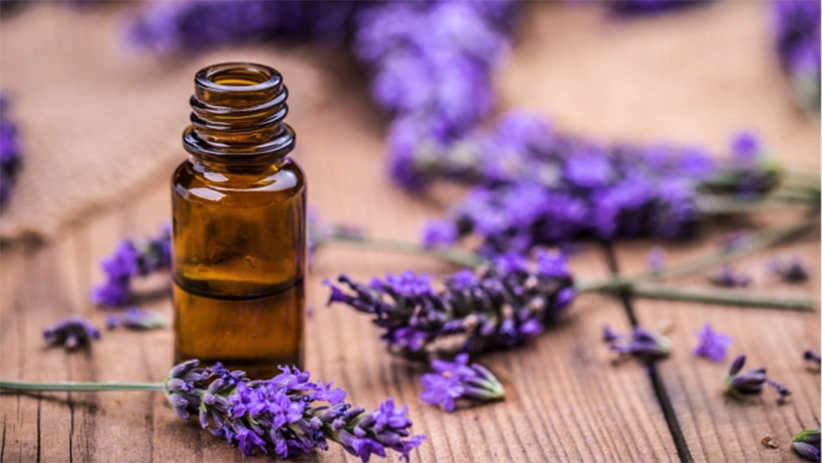 5 Aromatherapy Essential Oils for Stress Relief and Sleep1