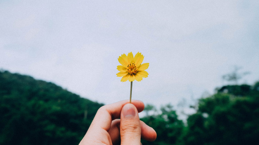 The Life-Changing Power of Expressing Daily Gratitude