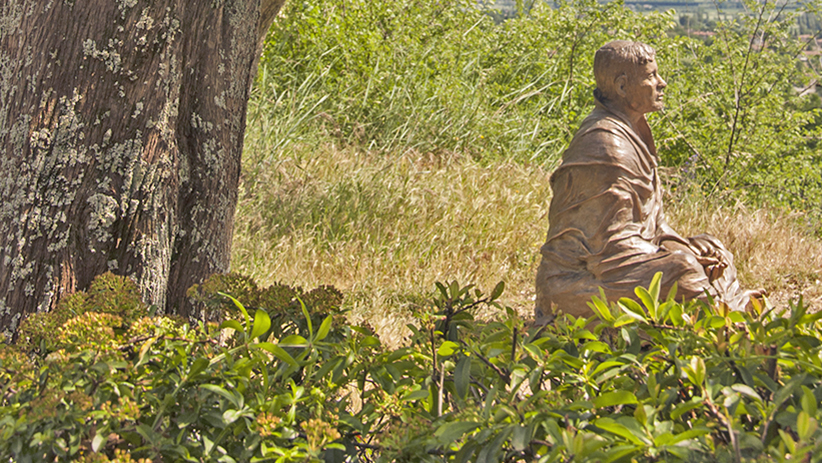 20 Life-Changing Lessons to Learn from St. Francis of Assisi