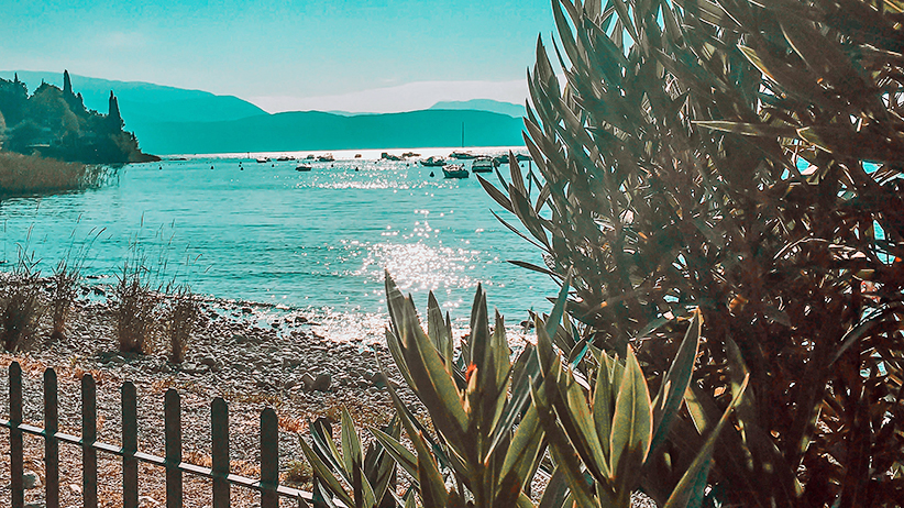 Learning to Let Go of Controlling Everything