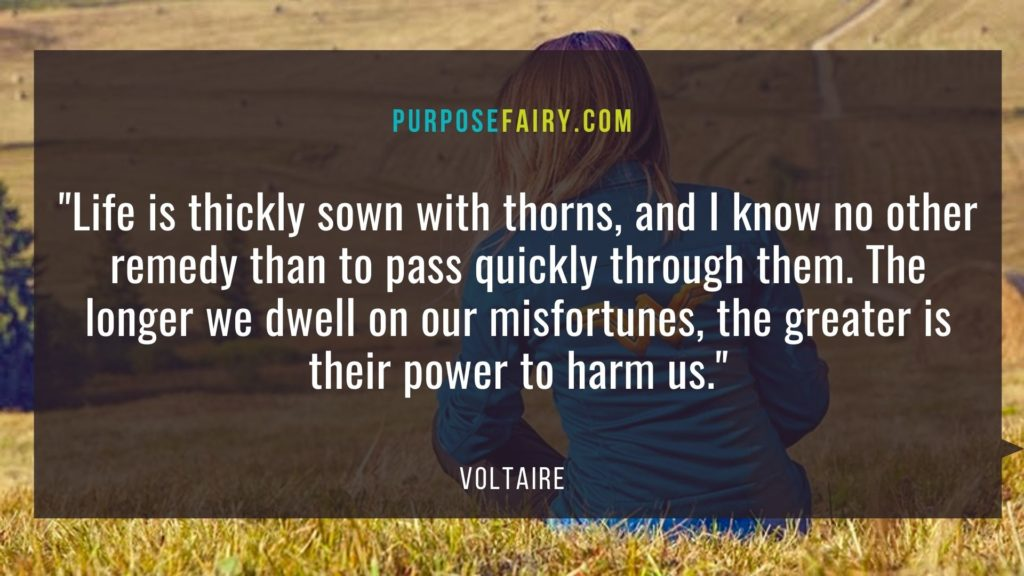 40 Life-Changing Lessons to Learn from Voltaire